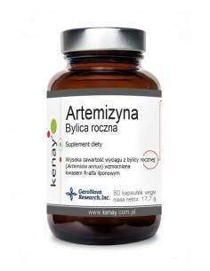 KENAY Artemizyna - Bylica roczna ekstrakt 60 kaps.